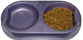 Don't buy a dog dish water bowl combination like this. They are awful!
